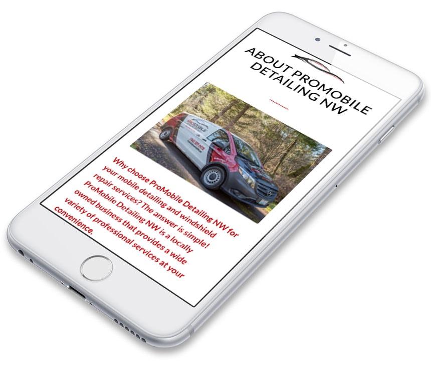Pro Mobile Detailing